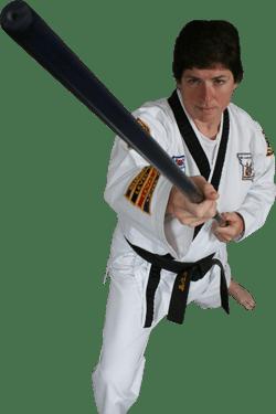 ATA Martial Arts in St  Ann MO   Taekwondo School
